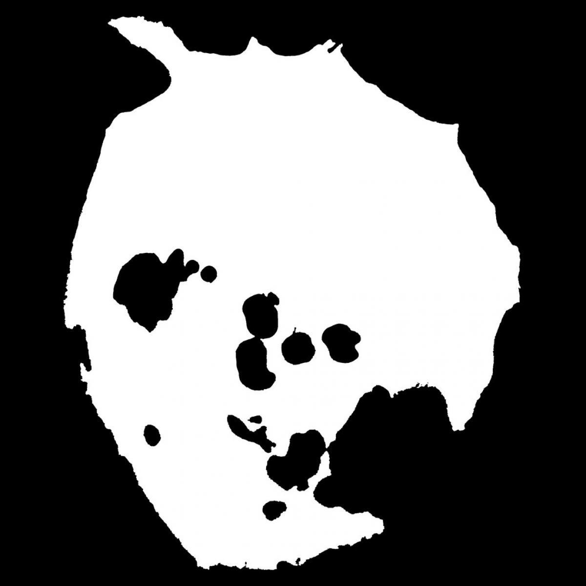 La desaparición y regreso de Radiohead a la web